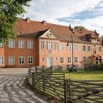 Bild: Das Herrenhaus (Frontansicht). Im Vordergrund eine Koppel.