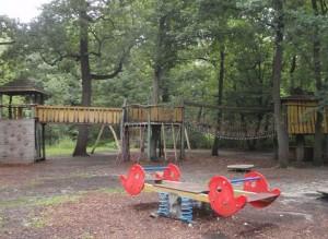 Federwippe im Vordergrund auf Lichtung, Holz- und Hängebrücke im Hintergrund im Wald