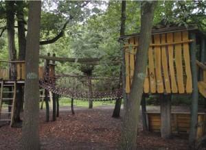 Bild Hängebrücke von Haus zu Podest im Wald zwischen Bäumen