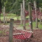 Bild Kletterseillandschaft aus roten Seilen auf Pfälen mitten im Wald