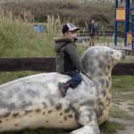 Bild - Kind reitet auf einer Seelöwen-Attrappe beim Spielplatz