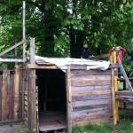 Bild: 2 Jungs stehen auf einer Holzhütte