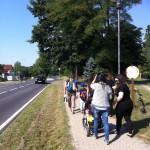 Bild: Gruppe läuft auf einem Weg neben Strasse zum Freizeitpark. Ansicht von hinten.