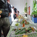 Foto: Ein buffet mit Gemüse u. a. an dem viele Menschen von hinten zu sehen Schlange stehen.