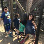 Foto: Ein Gehege, davor vier Kinder, zwei schauen in das Gehege, zwei nach vorne