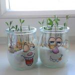 Foto: zwei Marmeladengläser mit Gesichtern beklebt darin wachsen kleine Sprösslinge